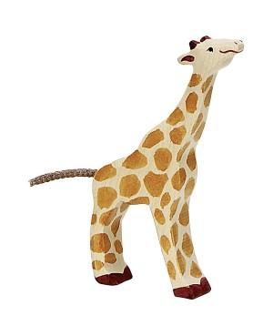 Girafe, petite, mangeant en...