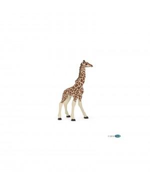 Girafon Papo