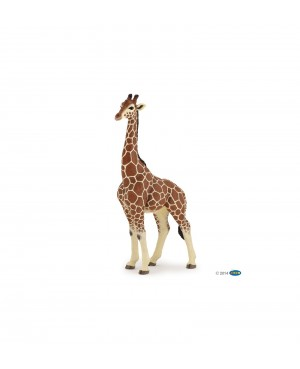 Girafe mâle Papo